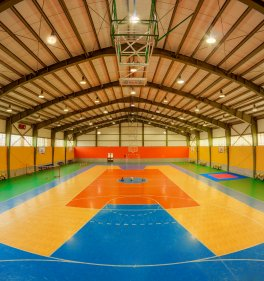 Multipurpose sports arena